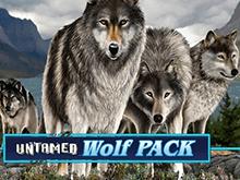 Ставки на реальные деньги в Вулкан 24 в Untamed Wolf Pack